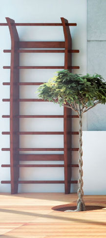 Akasa complementary products espalier